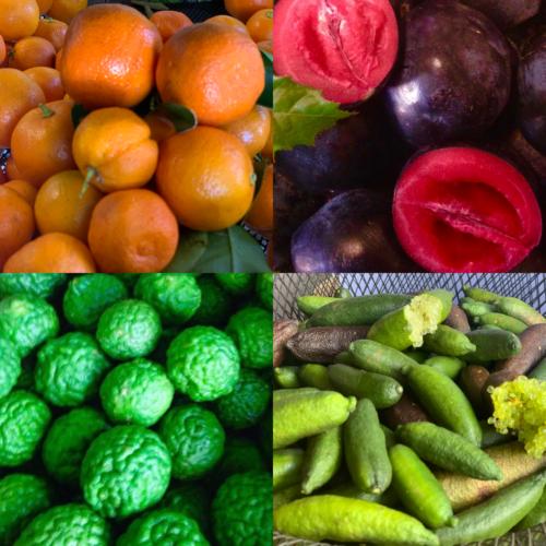 Farm Fresh Produce